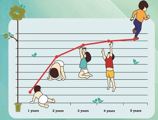 منحنی رشد کودک